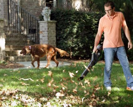This cordless leaf blower gets rave reviews (Photo via Amazon)