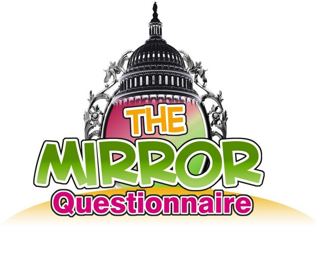 the-mirror-questionnairegreen