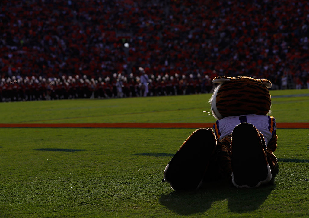 Mike the mascot is only a representation of LSU's real tiger mascot. (Photo by Kevin C. Cox/Getty Images)