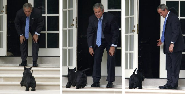 Combination photo of President George W. Bush calling for his dog, Barney, at the White House in Washington, September 28, 2007. REUTERS/Jim Young