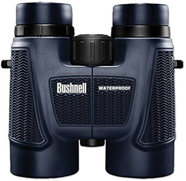 You can save 33 percent on these 4.6-star binoculars today (Photo via Amazon)