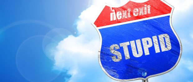 stupid2