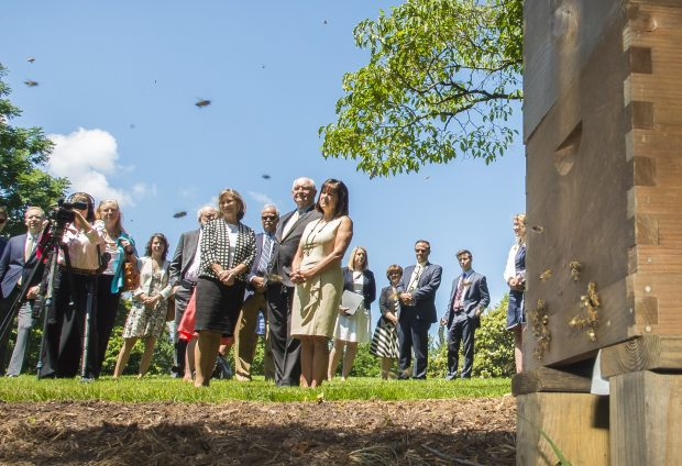 U.S. Department of Agriculture (USDA) Secretary Sonny Perdue and his wife Mary joined the Second Lady of the United States Karen Pence to unveil a bee hive on the Vice President's residential grounds in Washington, D.C., June 6, 2017. (Photo: USDA/Preston Keres/Flickr - public domain)