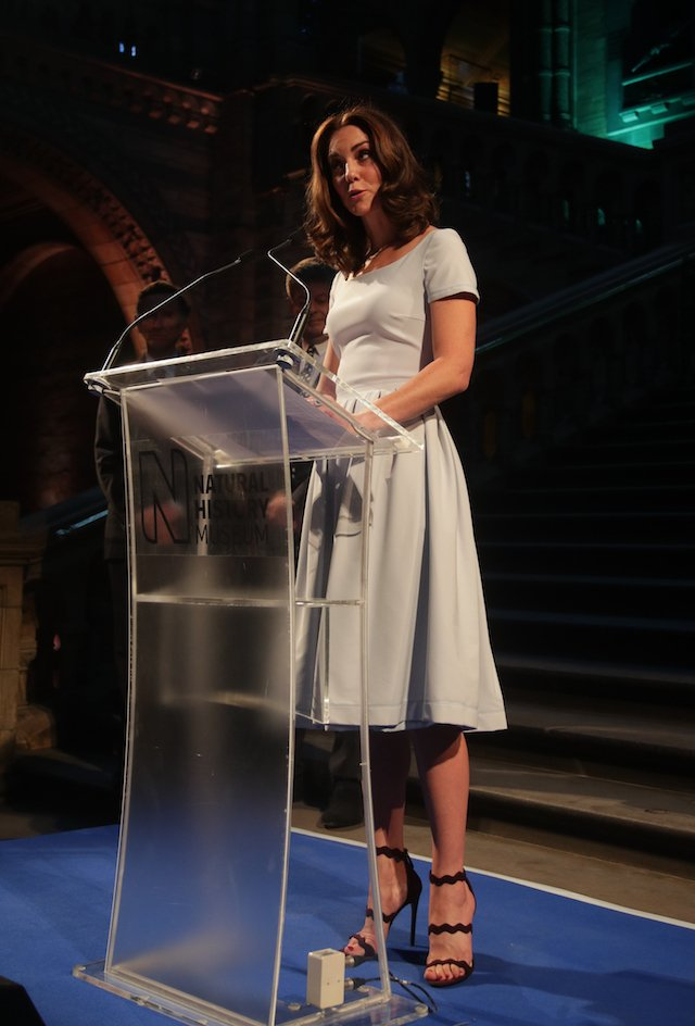 LONDON, UNITED KINGDOM - JULY 13: Catherine, Duchess of Cambridge makes a speech during the reopening of Hintze Hall at the Natural History Museum on July 13, 2017 in London, England.. (Photo by Yui Mok - WPA Pool/Getty Images)