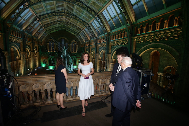 LONDON, UNITED KINGDOM - JULY 13: Catherine, Duchess of Cambridge and Sir David Attenborough (right) are shown a blue whale skeleton named Hope by museum director Sir Michael Dixon during the reopening of Hintze Hall at the Natural History Museum on July 13, 2017 in London, England.. (Photo by Yui Mok - WPA Pool/Getty Images)
