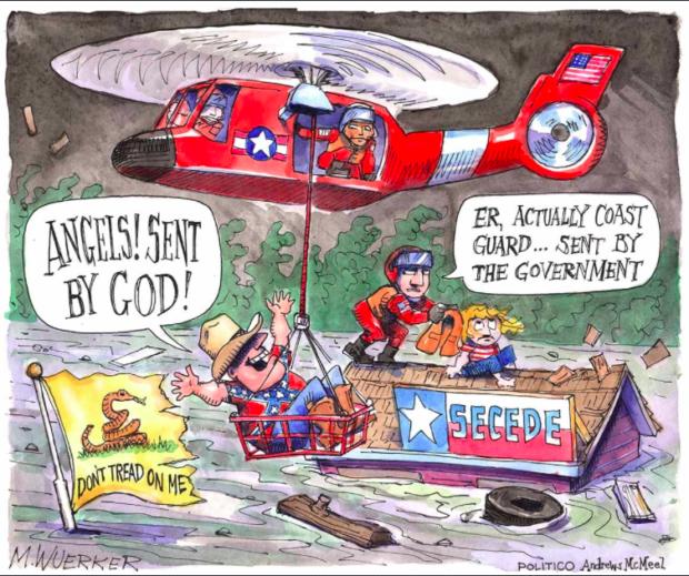 Screen Shot Politico Cartoon (Matt Wuerker)
