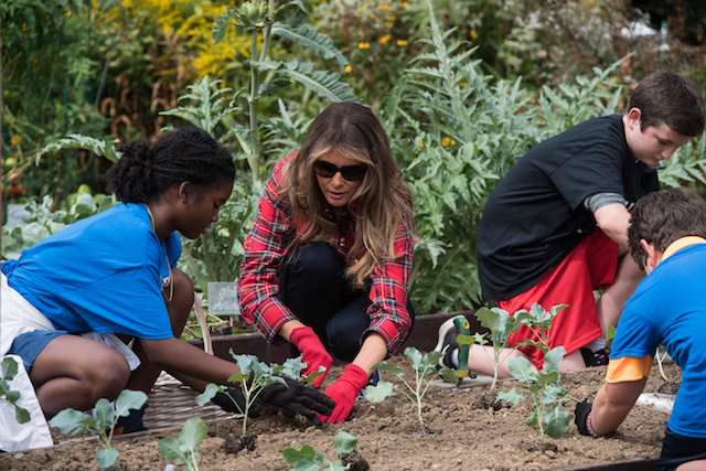 US First Lady Melania Trump works in the White House kitchen garden with children from the Boys and Girls Club of Greater Washington at the White House in Washington, DC, on September 22, 2017. / AFP PHOTO / NICHOLAS KAMM (Photo: NICHOLAS KAMM/AFP/Getty Images)