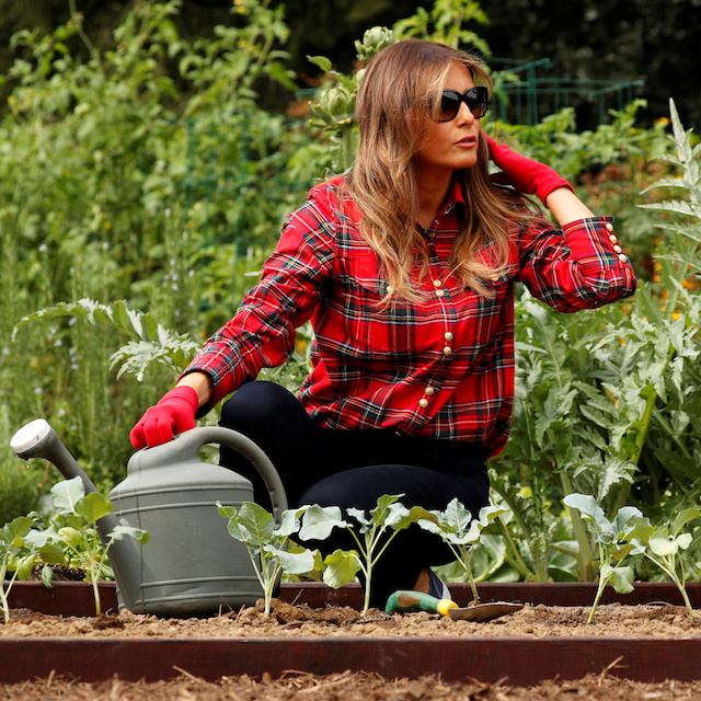 U.S. First Lady Melania Trump works in the White House kitchen garden with children from the Boys and Girls Clubs of Greater Washington, at the White House in Washington, U.S. September 22, 2017. REUTERS/Jonathan Ernst