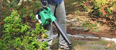 Leaf blower (Photo via Amazon)