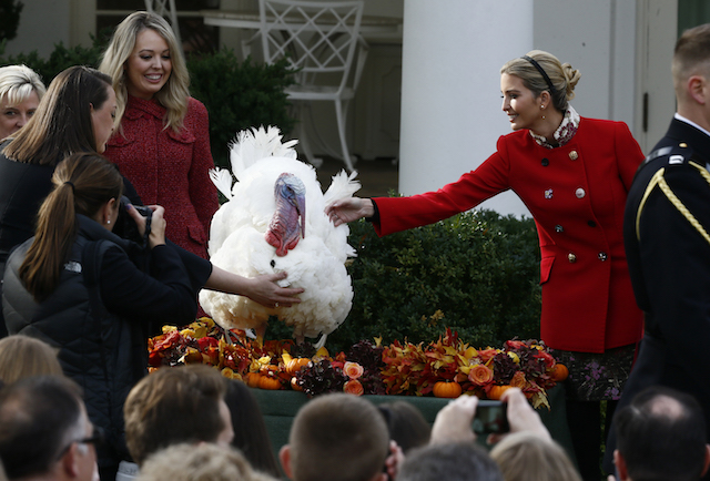 White House senior advisor Ivanka Trump pets the National Thanksgiving turkey Drumstick as Tiffany Trump (3rdL), daughter of U.S. President Donald Trump looks on during the 70th turkey pardoning ceremony in the Rose Garden of the White House in Washington, U.S., November 21, 2017. REUTERS/Jim Bourg - HP1EDBL1GY3Z9