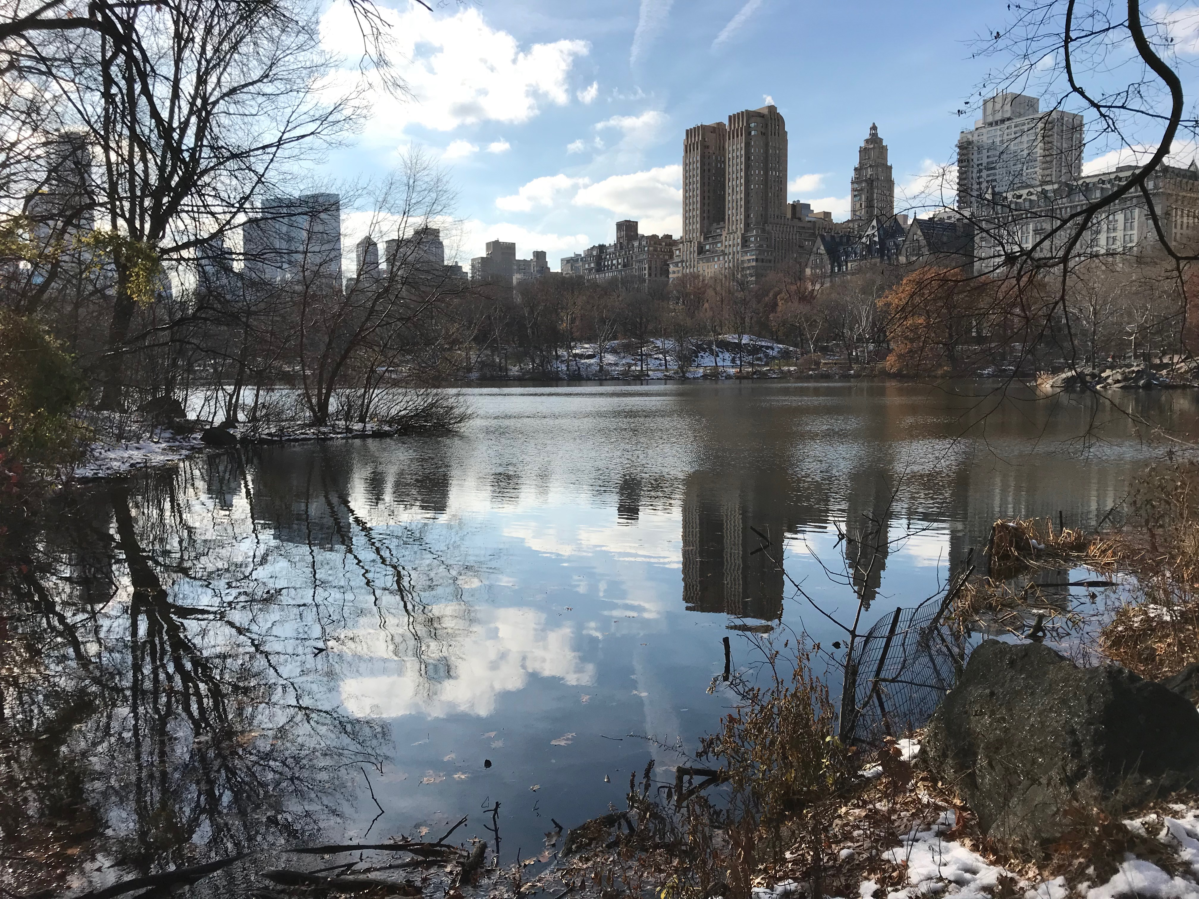 The Lake in Central Park in New York City. (DCNF/Ethan Barton)