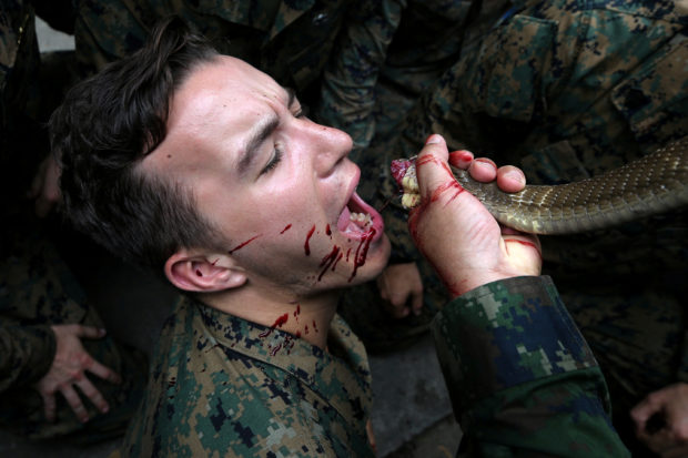 "A U.S. Marine drinks the blood of a cobra during a jungle survival exercise as part of the ""Cobra Gold 2018"" (CG18) joint military exercise, at a military base in Chonburi province, Thailand, February 19, 2018. REUTERS/Athit Perawongmetha"