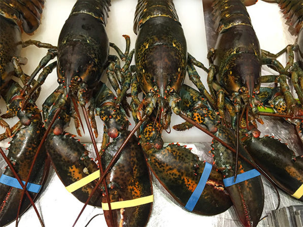 Normally $180, Get Main Lobster is 50 percent off