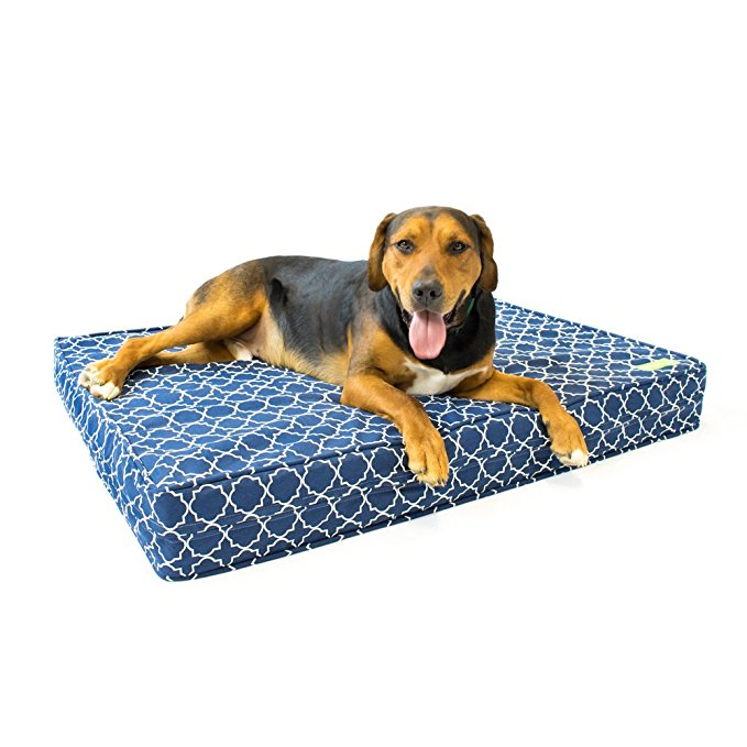 Normally $140, this memory foam dog bed is 26 percent off today (Photo via Amazon)